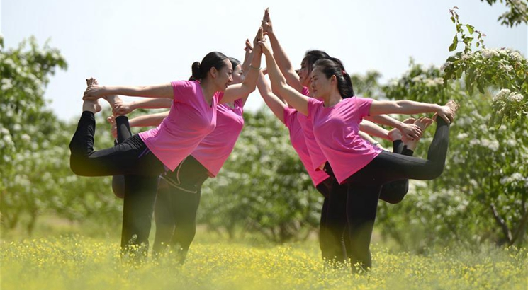 Yoga lovers practise yoga amid hawthorn blossoms in Hebei