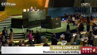 UN General Assembly votes on ceasefire